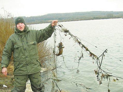 Штраф за ловлю стерляди 2018