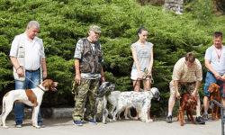 Охотничий фестиваль в Севастополе