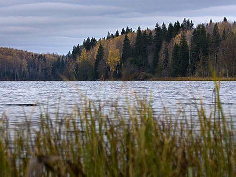"""Национальный парк """"Валдайский"""". Фото: Андриан Колотилин."""