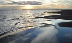 За разлив нефти взыскали 25 млн.рублей