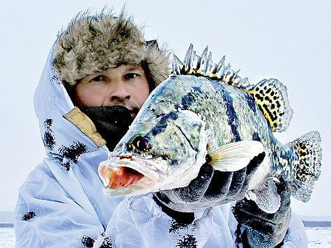 Отличный трофей, пойманный со льда зимнего Амура. Фото: Алексей Потехин.