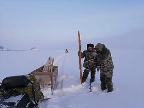 Фото: пресс-служба ФГБУ «Заповедное Подлеморье».
