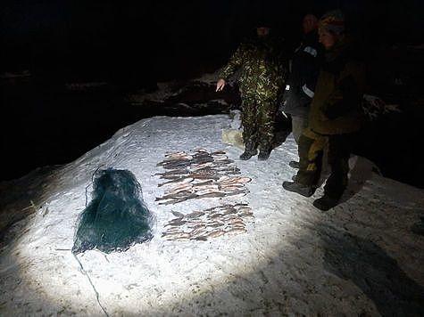 Фото: пресс-служба Кавказского государственного природного биосферного заповедника.