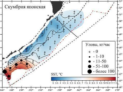 Материал ТИНРО-центр.