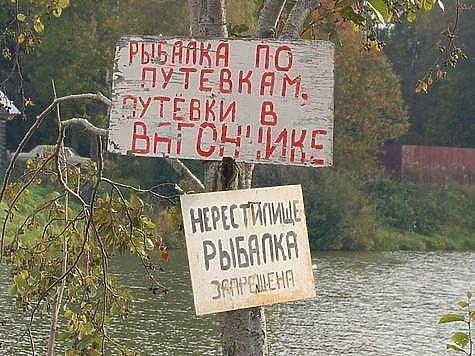 Фото: Андрей Яншевский.